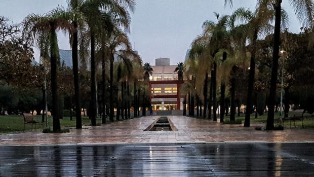 Suelo mojado por la lluvia en el campus alicantino, una estampa inusual, este miércoles por la mañana