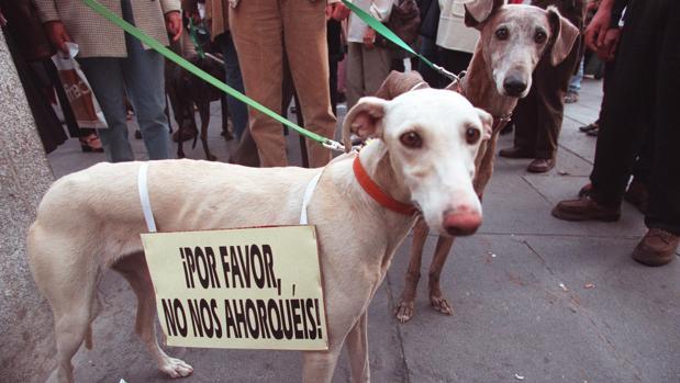 Imagen de archivo de una manifestación contra el maltrato animal