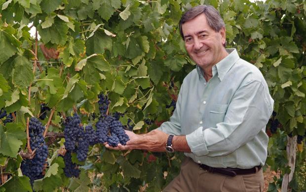 Alfonso Cortina, empresario y propietario de la bodega