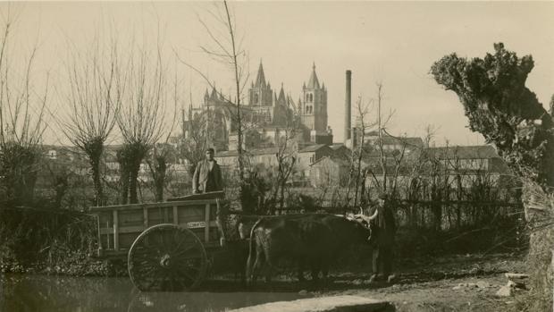 Un carro tirado por vacas atraviesa la presa de San Lorenzo, con la Catedral de León al fondo