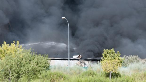 El incendio de Chiloeches se inició el 26 de agosto