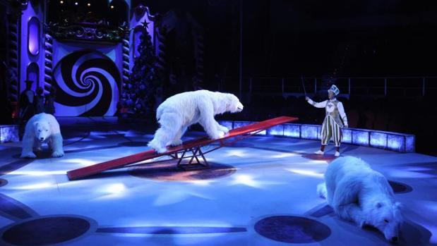 Osos «animatrónicos», en el Circo Price