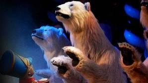Los osos «animatrónicos», protagonistas de la Navidad en el Circo Price