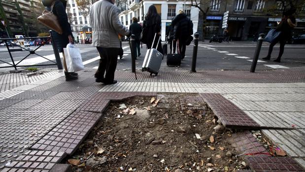 Varios peatones esquivan un alcorque vacío, en mitad de la glorieta de San Bernardo