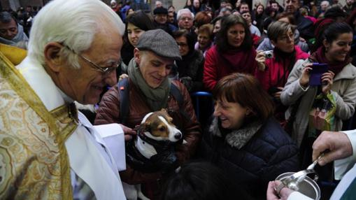 Tradicional bendición de animales en la parroquia de San Antón