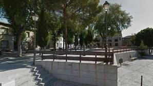 Muere una niña de 12 años tras caerle una rama de un árbol al salir del colegio