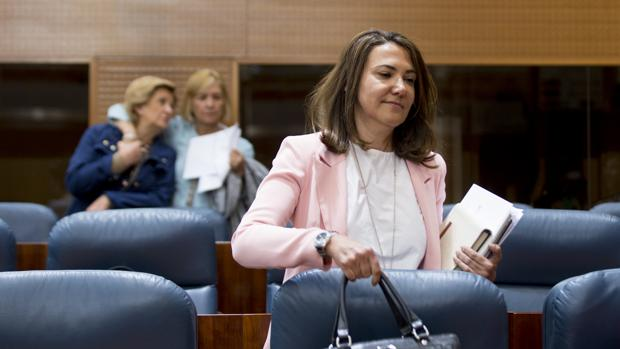 Isabel González, el jueves, en el pleno de la Asamblea de Madrid