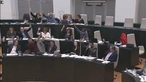 Momento de la votación en la que Sánchez Mato se tapa la nariz para votar a favor