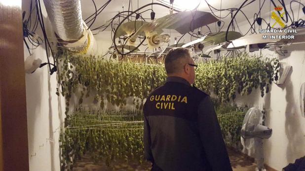 Un agente inspecciona las instalaciones donde hallaron marihuana