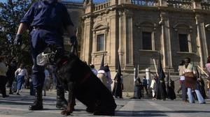 Perros policía detectan 227 bellotas de hachís en dos tetra-brik en Elche