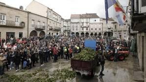 La Plaza Mayor de Ribadavia acogió la lectura de un manifiesto al terminar la protesta