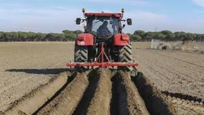 El informe de Bankia detecta una «infrarrepresentación» en el tema de la agricultura y ganadería