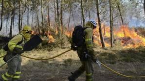 Brigadistas trabajando en la extinción de un incendio forestal en Ourense