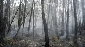 Superficie calcinada por un incendio registrado en Melón (Orense)