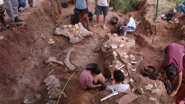 Excavación en el Oterillo, donde ha tenido lugar el hallazgo