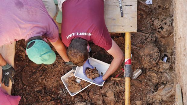 Imagen de los arqueólogos en los trabajos de exhumación en el cementerio de Paterna