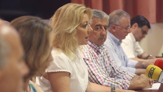 La portavoz del PP en la Diputación de Soria, Ascensión Pérez en rueda de prensa junto a los otros cinco diputados en la que han comunicado su baja del partido.