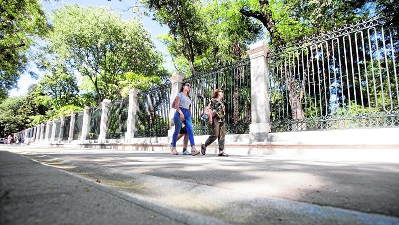 Un paseo hist rico por el per metro exterior del real for Biblioteca digital real jardin botanico