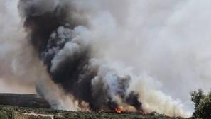 Incendio en Pino del Oro, en Zamora