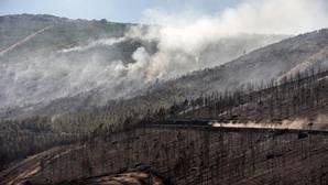 Terreno arrasado por el fuego en el municipio de Verín