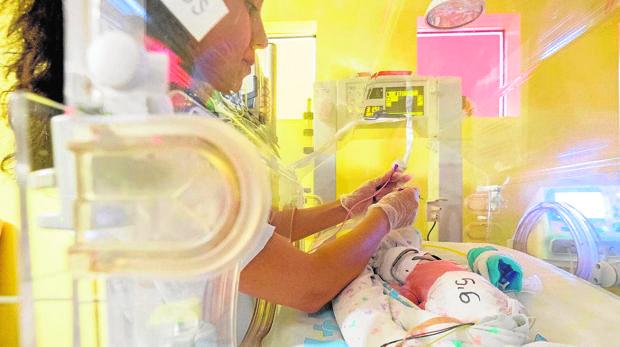 Un paciente de la unidad de Neonatología es alimentado con leche materna donada