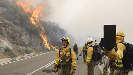Incendio en San Martín del Pimpollar