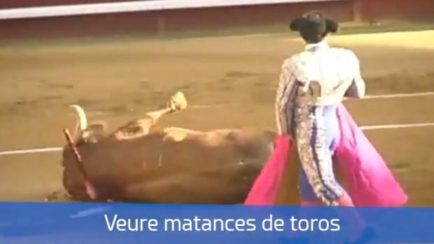 Lanzan una campaña independentista que identifica a España con Franco y matanzas de toros