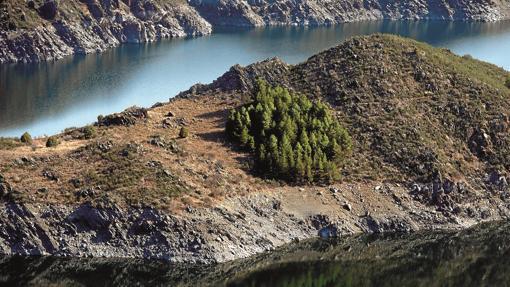 Islote en el cañón del río Lozoya