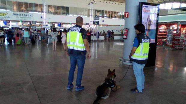 Dos agentes en el aeropuerto de El Altet (Alicante-Elche)