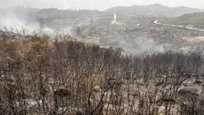 Superficie quemada durante los incendios en Orense