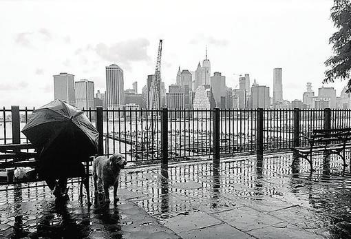La isla de Manhattan vista desde el Promenade