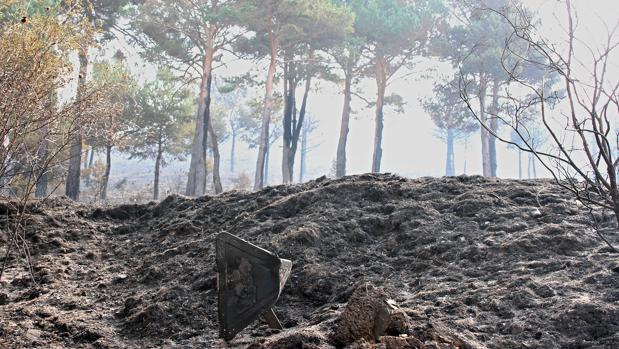 Imagen de archivo de los restos del incendio de Encinedo (León)