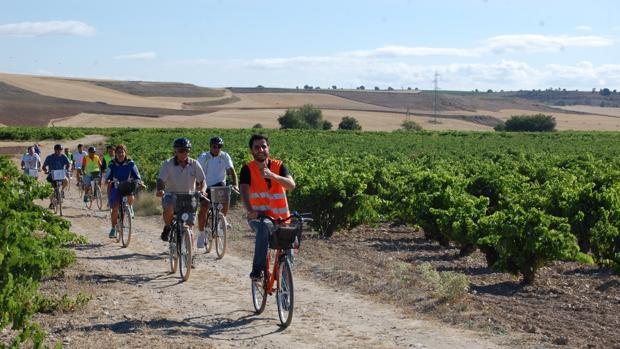 Ruta en bici por los viñedos de Cigales