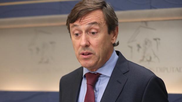 Rafael Hernando, portavoz del PP en el Congreso