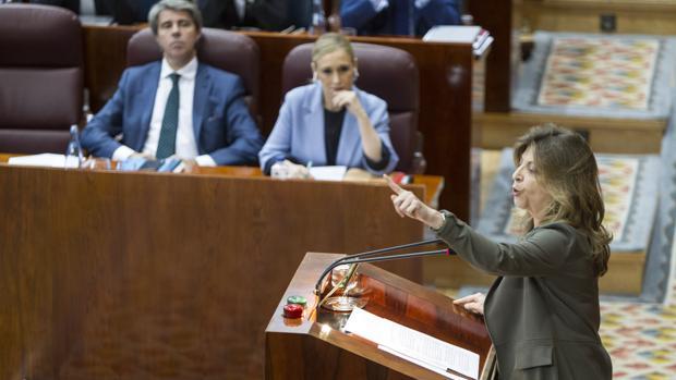Engracia Hidalgo, consejera de Economía, en la Asamblea de Madrid