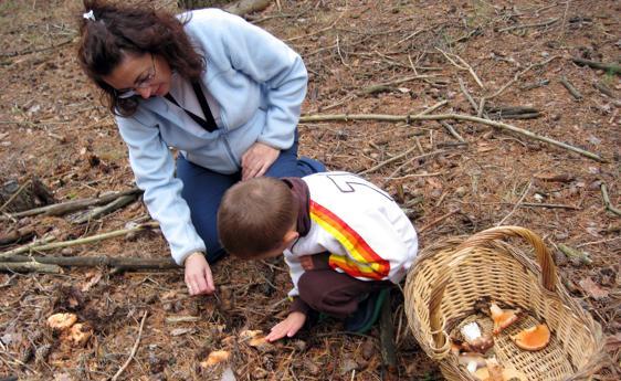 Una mujer y un niño recogen setas en una imagen de archivo