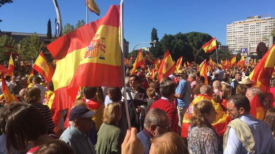 Cconcentración en la Plaza de Colón (Madrid), en defensa de la unidad de España en Madrid, convocada por DENAES