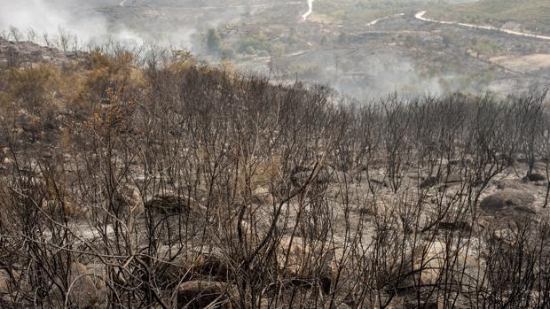 Montes orensanos arrasados por el fuego, en una imagen de archivo