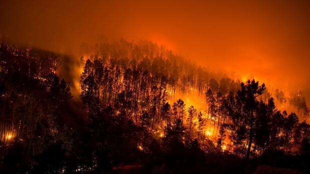 Incendio forestal en el municipio orensano de Lobios