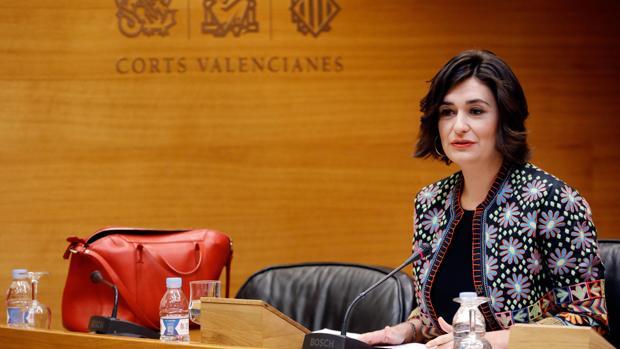 Imagen reciente de la consellera de Sanidad, Carmen Montón