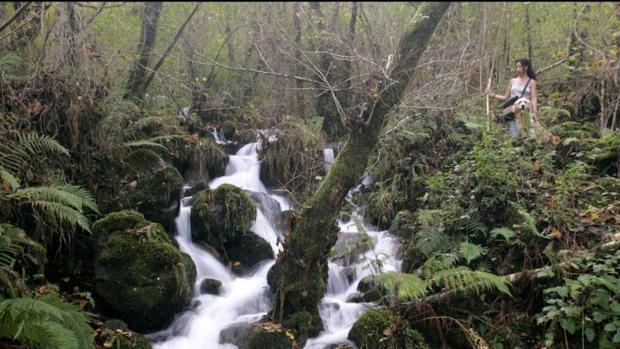 Fragas do Eume, en Galicia