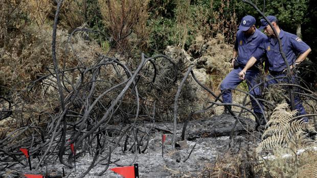 Policías Nacionales examinan un terreno calcinado por un incenedios en Amres (La Coruña)
