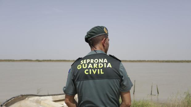 Imagen de archivo de un agente del Seprona