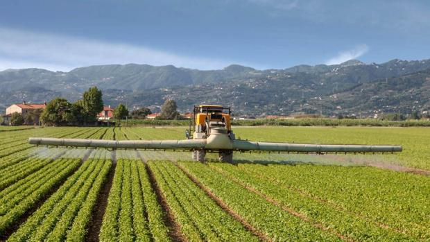 El glifosato es uno de los herbicidas más usados en el mundo, comercializado desde 1974
