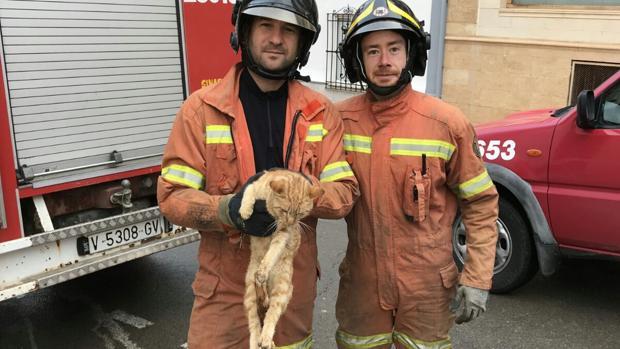 Dos bomberos voluntarios de Sinarcas con el gato rescatado