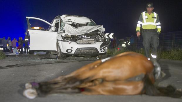 Imagen de archivo de un accidente mortal para un caballo y su jinete