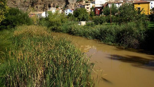El río Jalón, a su paso por la pedanía de Huérmeda