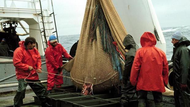 Un grupo de marineros descargando capturas en la cubierta de un barco pesquero