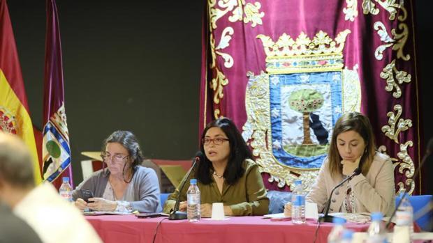 La concejal-presidente de Usera, Rommy Arce, en el pleno del distrito