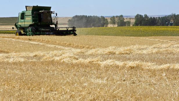 Una explotación agrícola